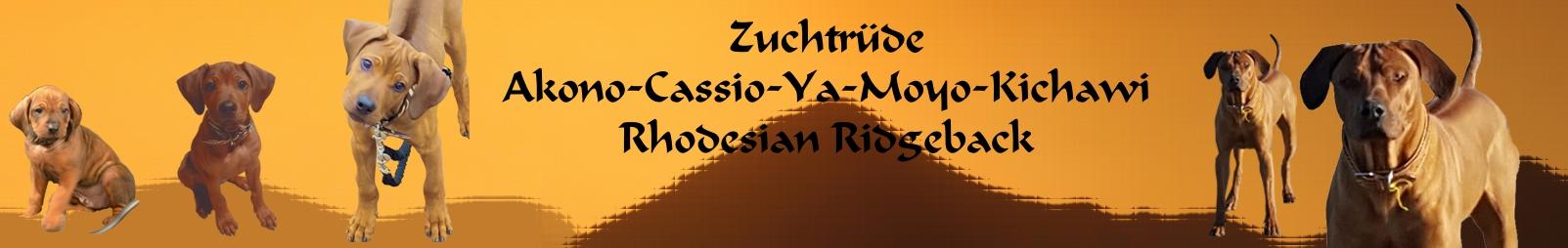 Akono-Cassio-Ya-Moyo-Kichawi